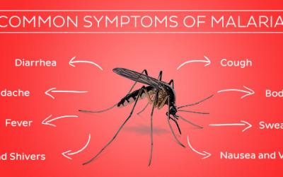malaria-symptoms