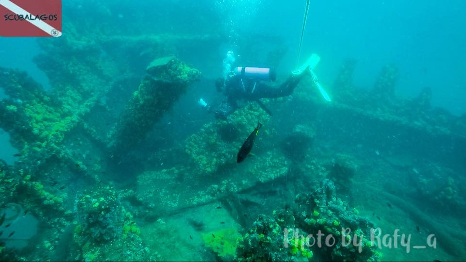 Come Dive With Me In Lagos Oyibos Online