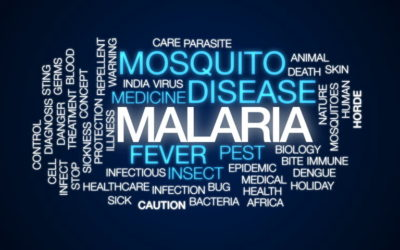 malaria-word-cloud